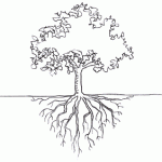 Rooted and Grounded in Love Part 1: The Roots, The Vine, and the Branch
